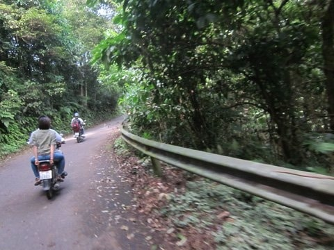 One Day Motorbike Tour to Ba Vi National Park
