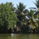 Full Day motorbike tour to Mekong Delta