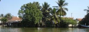 Full Day motorbike tour to Mekong Delta