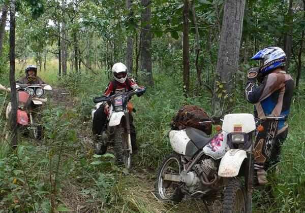Cambodia Motorcycle Tour in Focus