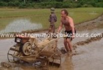 Short North-west Vietnam motorbike tour to Sapa, train back