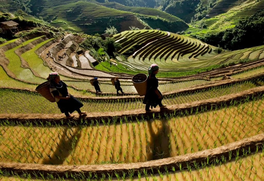 Northern & Central Vietnam motorbike tour