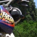 Laos motorbike Buffalo Tour