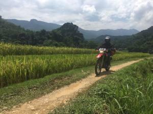 6-DAY NORTHWEST VIETNAM MOTORBIKE TOUR FROM HANOI TO MAI CHAU AND SAPA