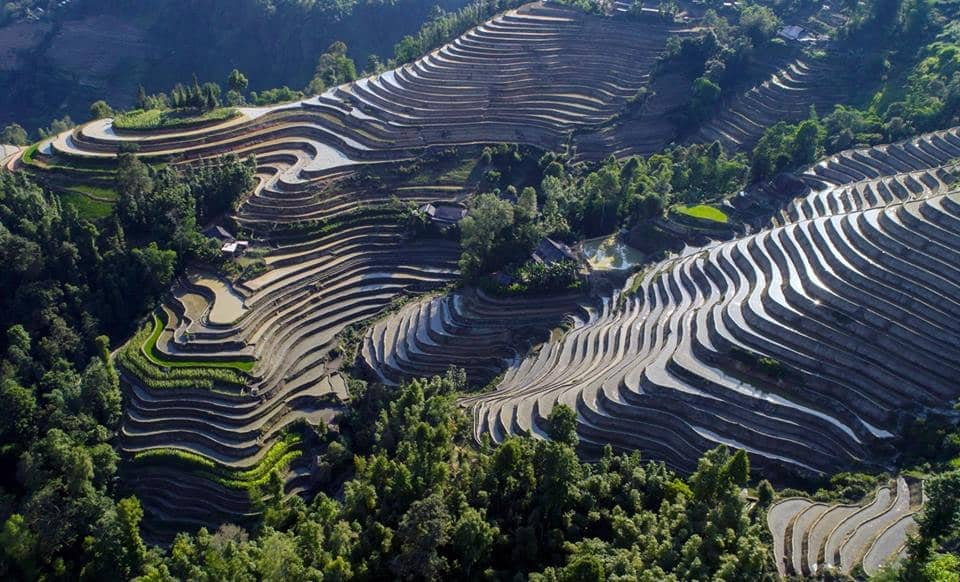 Hoang Su Phi's terraced fields